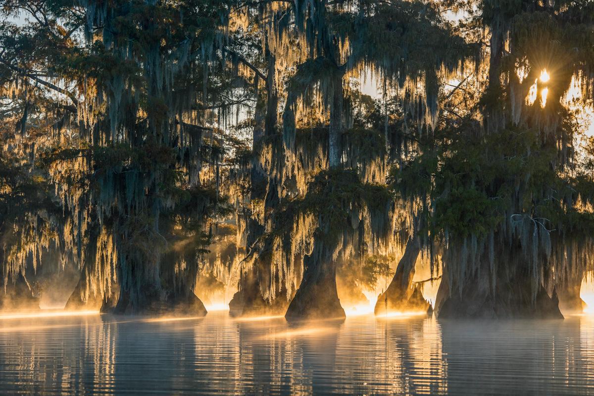 Um Momente wie diesen am Lake Fausse Pointe (Loisiana) mit Nebel und Sonnenaufgang festhalten zu können, muss man im Dunkeln, lange vor Sonnenaufgang mit dem Kajak losfahren.